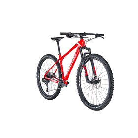 FOCUS Raven 8.8 red